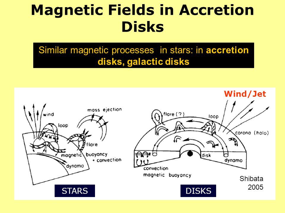 Magnetic Fields in Accretion Disks Similar magnetic processes in stars: in accretion disks, galactic disks Shibata 2005 STARSDISKS Wind/Jet
