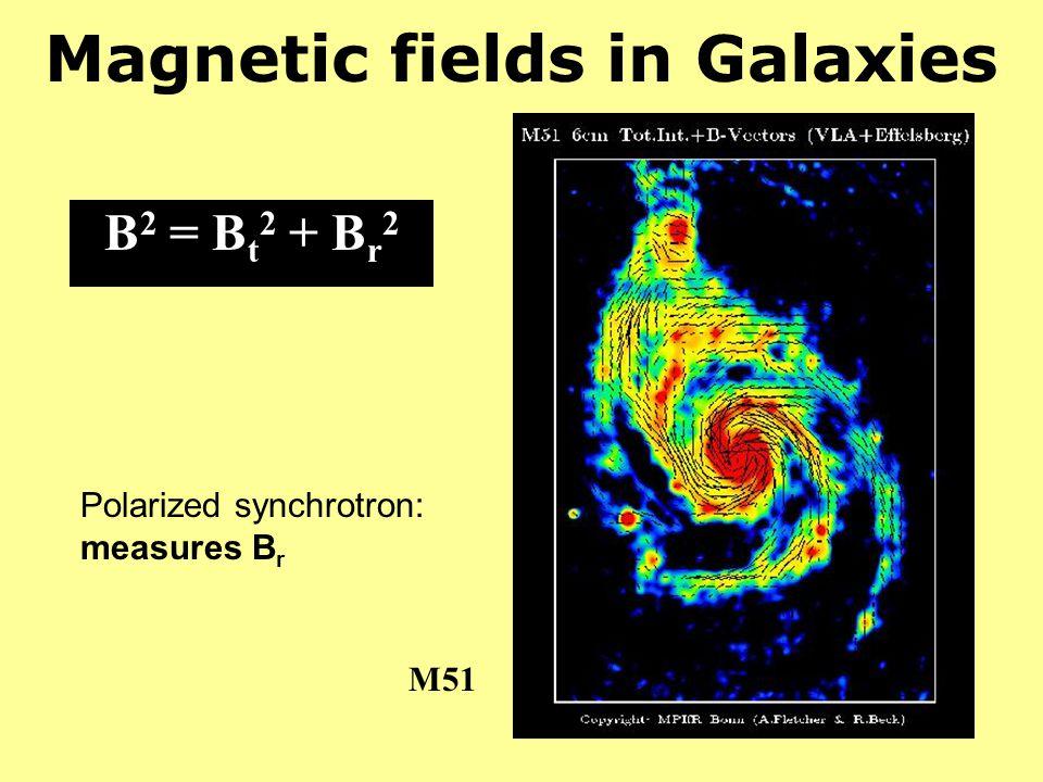 Magnetic fields in Galaxies B 2 = B t 2 + B r 2 Polarized synchrotron: measures B r M51