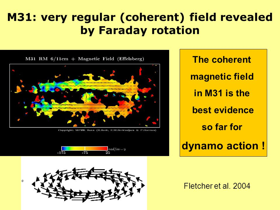 M31: very regular (coherent) field revealed by Faraday rotation The coherent magnetic field in M31 is the best evidence so far for dynamo action ! Fle