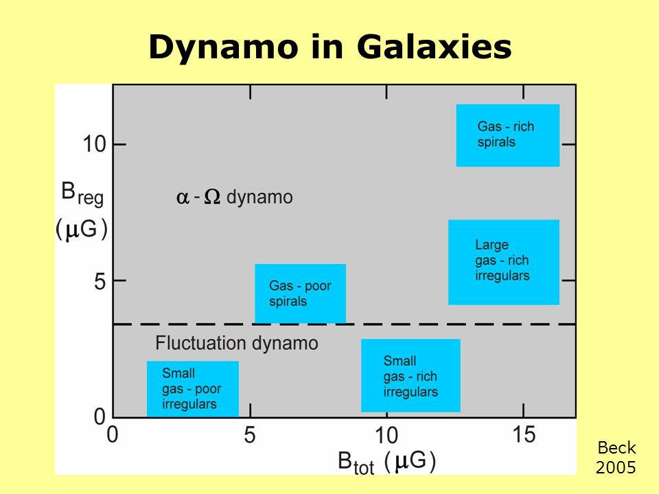 Dynamo in Galaxies Beck 2005