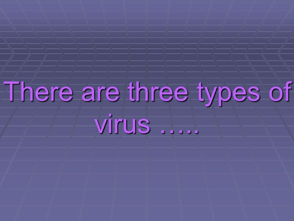 There are three types of virus …..