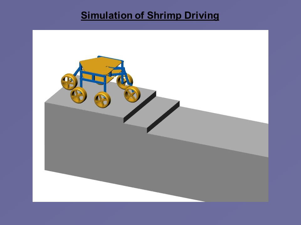 Simulation of Shrimp Driving