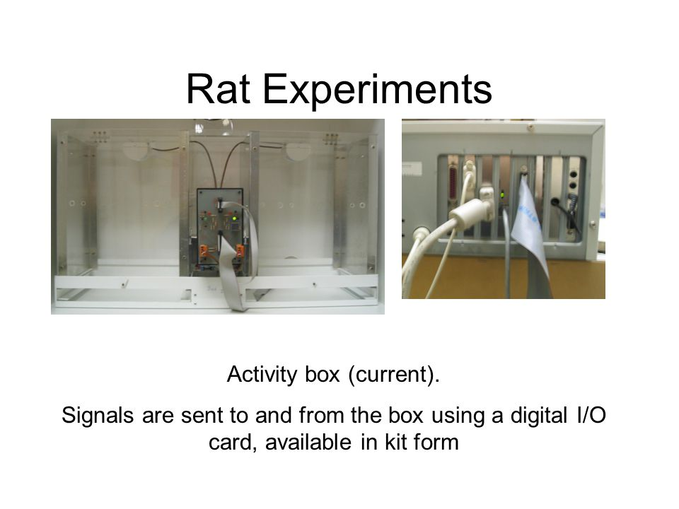 Rat Experiments Activity box (current). Signals are sent to and from the box using a digital I/O card, available in kit form