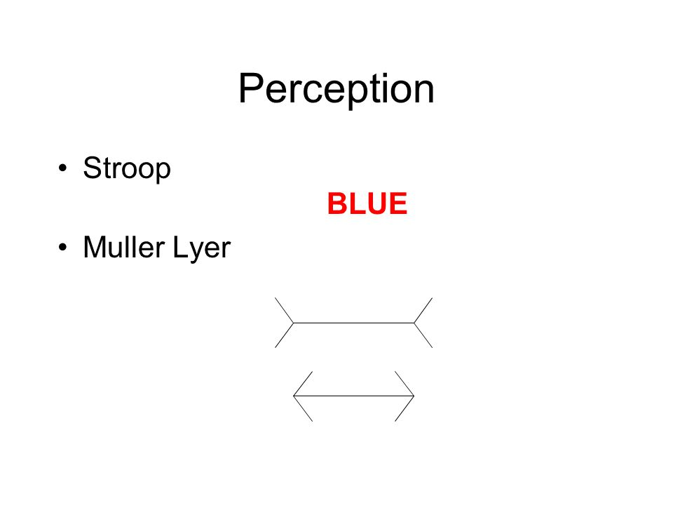 Perception Stroop BLUE Muller Lyer