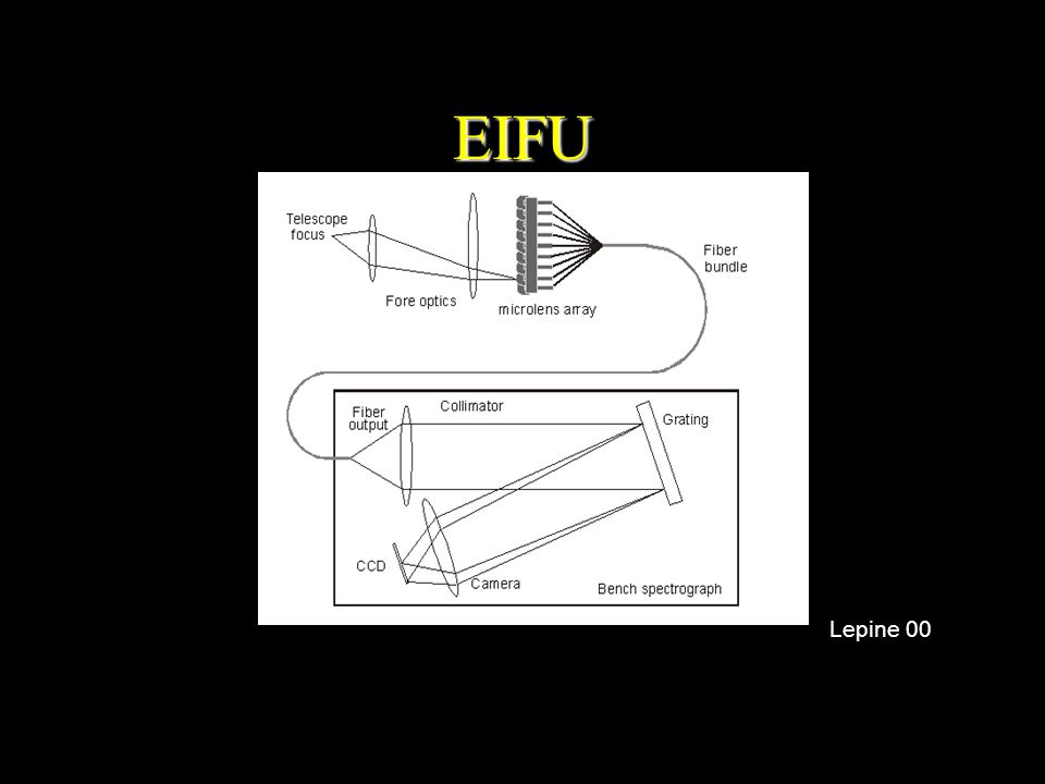 EIFU Lepine 00