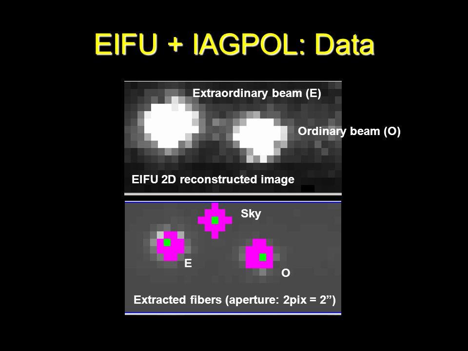 EIFU 2D reconstructed image Extracted fibers (aperture: 2pix = 2) Sky Ordinary beam (O) Extraordinary beam (E) E O EIFU + IAGPOL: Data