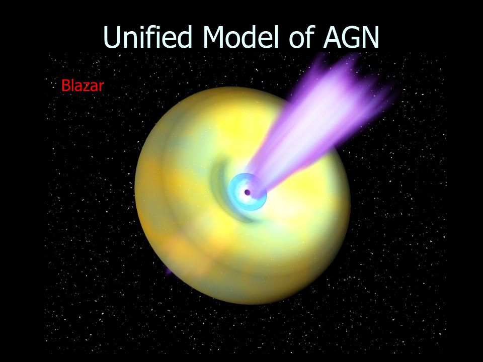 Unified Model of AGN Blazar