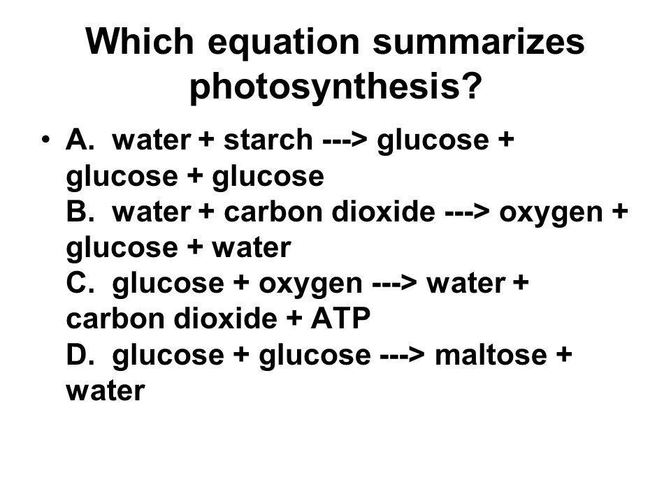 Which equation summarizes photosynthesis? A. water + starch ---> glucose + glucose + glucose B. water + carbon dioxide ---> oxygen + glucose + water C