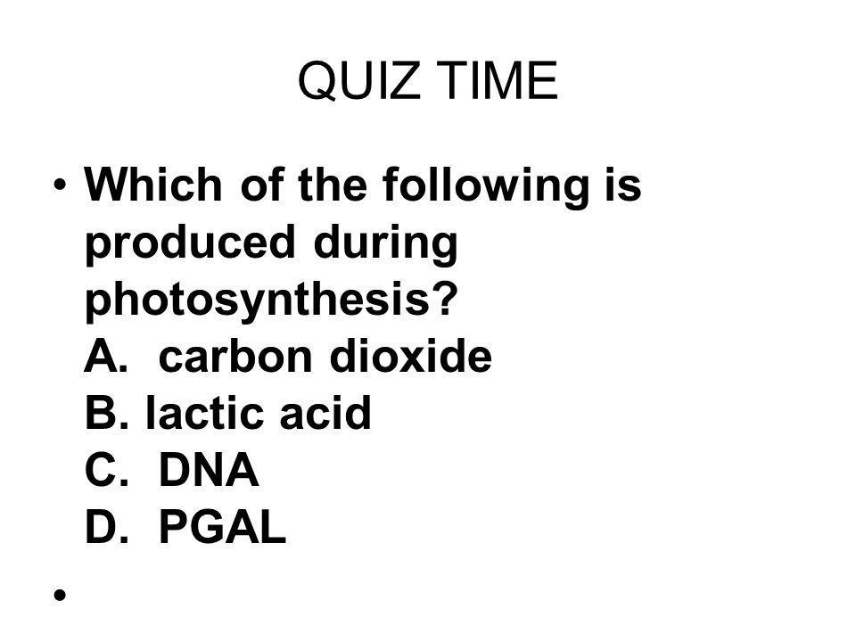QUIZ TIME Which of the following is produced during photosynthesis? A. carbon dioxide B. lactic acid C. DNA D. PGAL