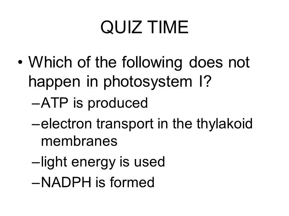 QUIZ TIME Which of the following does not happen in photosystem I? –ATP is produced –electron transport in the thylakoid membranes –light energy is us
