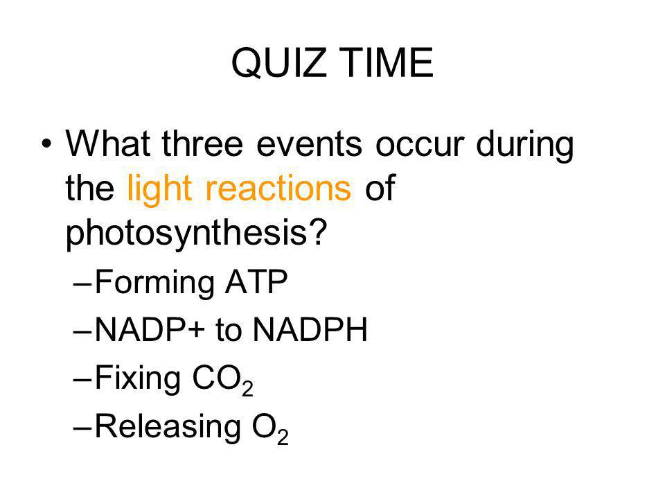 QUIZ TIME What three events occur during the light reactions of photosynthesis? –Forming ATP –NADP+ to NADPH –Fixing CO 2 –Releasing O 2
