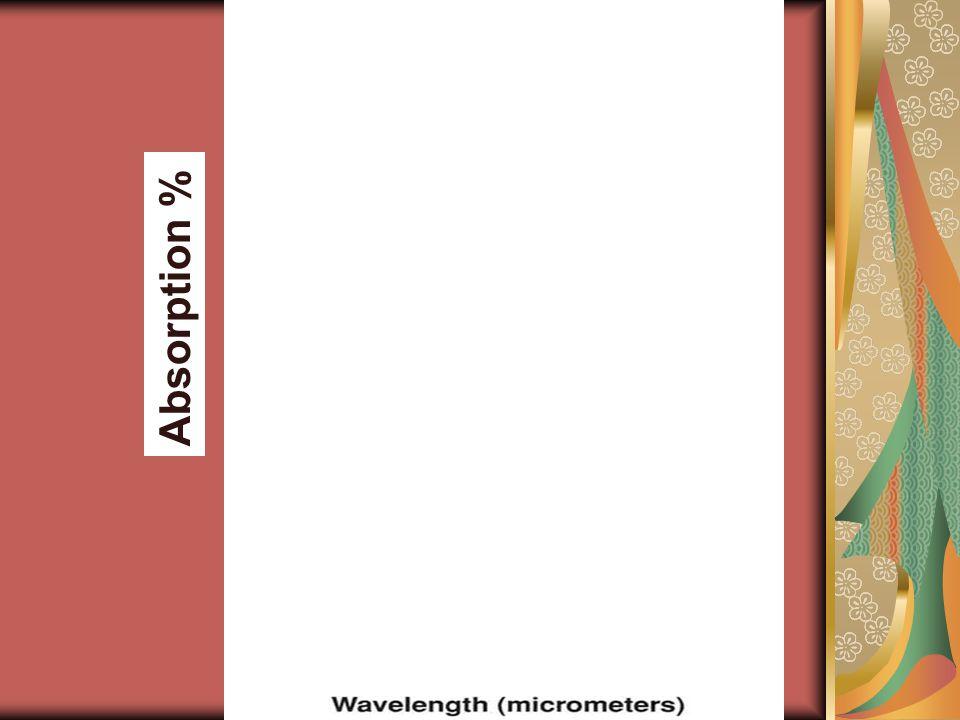 Absorption %