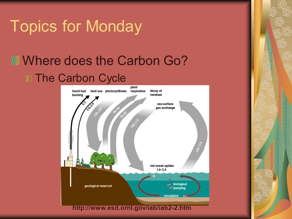 Topics for Monday Where does the Carbon Go The Carbon Cycle