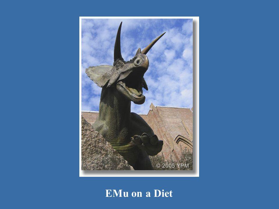 Toro 1 EMu on a Diet
