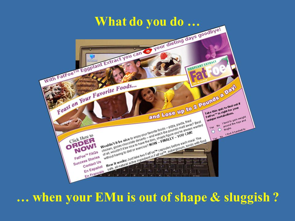 What do you do … … when your EMu is out of shape & sluggish ?