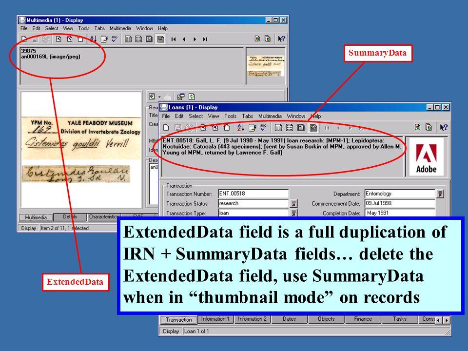 ExtendedData SummaryData ExtendedData field is a full duplication of IRN + SummaryData fields… delete the ExtendedData field, use SummaryData when in thumbnail mode on records