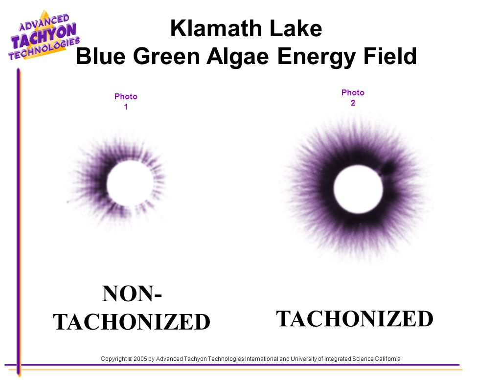Lynette Marks, Body, Soul & Angels 919-949-3039 TACHONIZED Photo 1 Photo 2 Copyright 2005 by Advanced Tachyon Technologies International and University of Integrated Science California NON- TACHONIZED Klamath Lake Blue Green Algae Energy Field