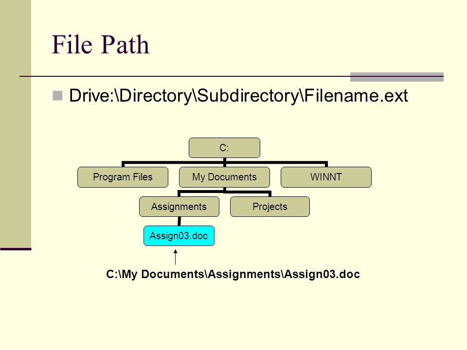 File Path Drive:\Directory\Subdirectory\Filename.ext C: Program Files My Documents Assignments Assign03.doc Projects WINNT C:\My Documents\Assignments\Assign03.doc
