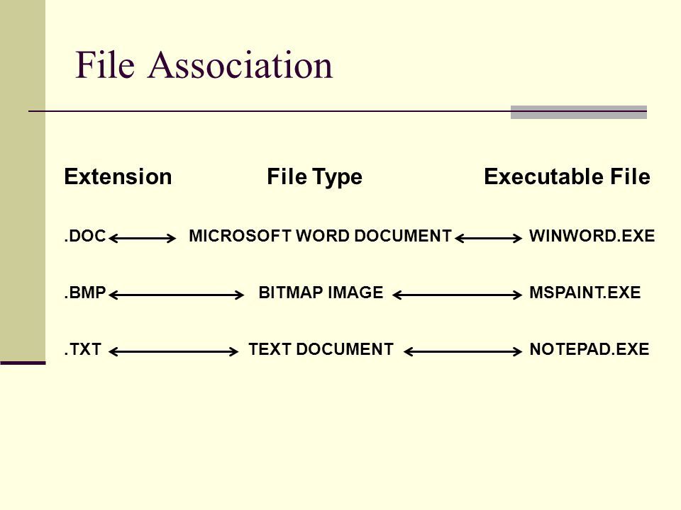 File Association ExtensionExecutable FileFile Type.DOCWINWORD.EXEMICROSOFT WORD DOCUMENT.BMPMSPAINT.EXEBITMAP IMAGE.TXTNOTEPAD.EXETEXT DOCUMENT