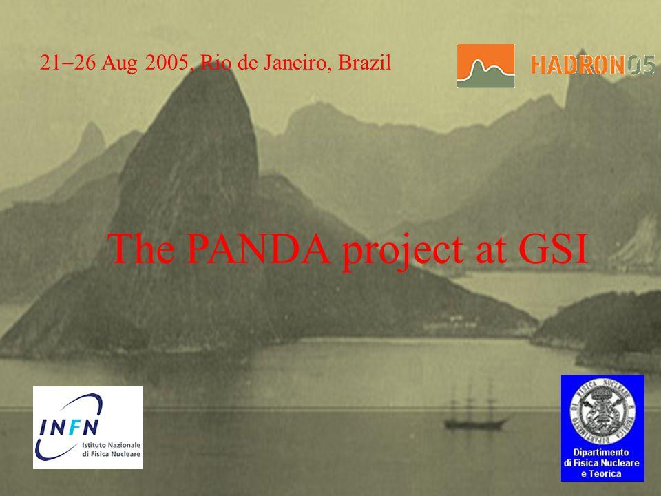 21 26 Aug 2005, Rio de Janeiro, Brazil The PANDA project at GSI