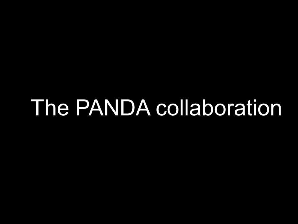 PANDA Collaboration At present a group of 340 physicists from 47 institutions of 16 countries Basel, Beijing, Bochum, Bonn, IFIN Bucharest, Catania, Cracow, Dresden, Edinburg, Erlangen, Ferrara, Frankfurt, Genova, Giessen, Glasgow, KVI Groningen, GSI, Inst.