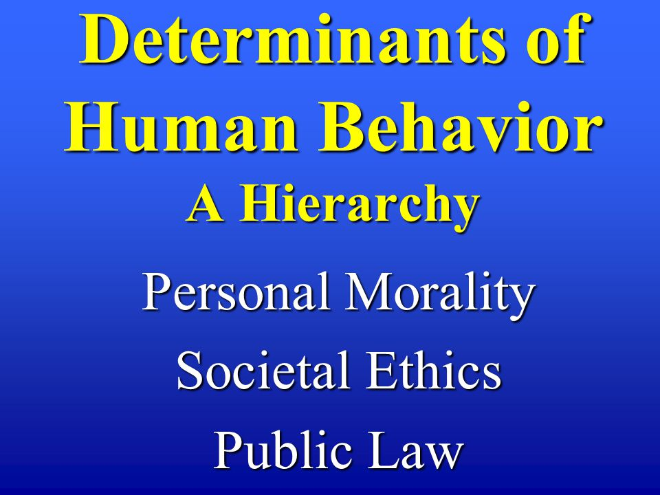 Determinants of Human Behavior A Hierarchy Personal Morality Societal Ethics Public Law