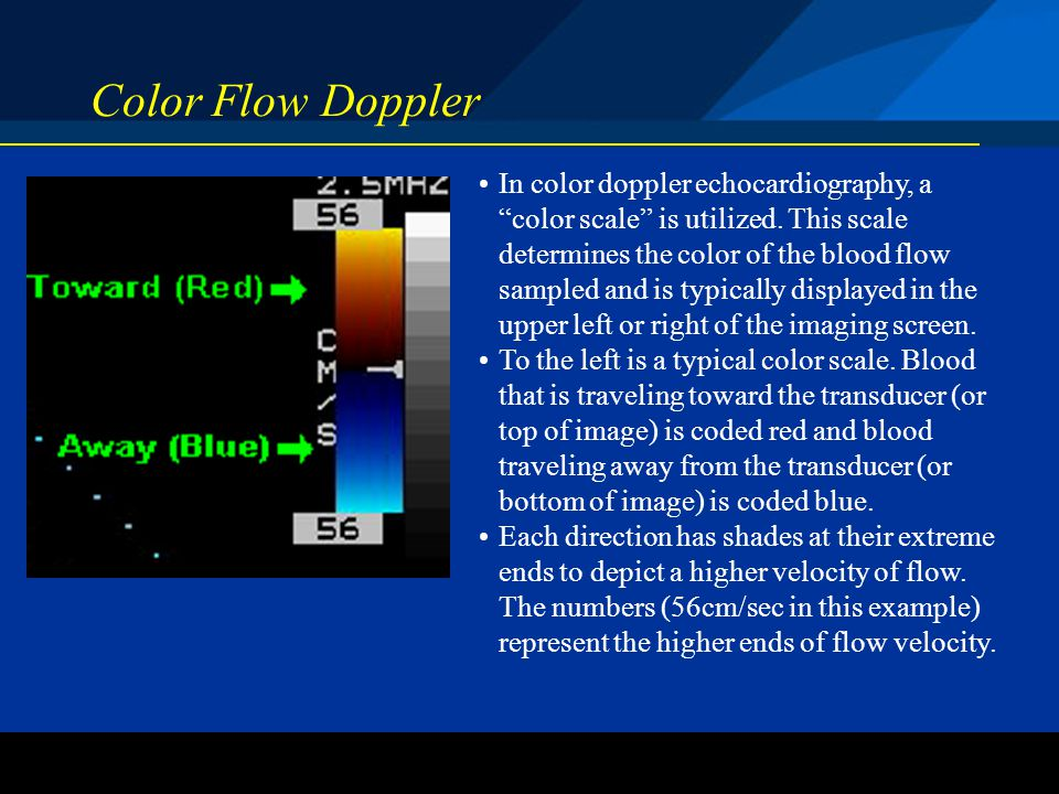 ©2004 St. Jude Medical CRMD Color Flow Doppler In color doppler echocardiography, a color scale is utilized. This scale determines the color of the bl
