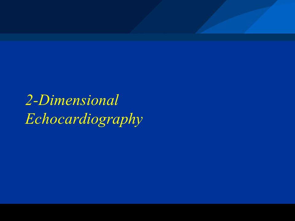 ©2004 St. Jude Medical CRMD 2-Dimensional Echocardiography