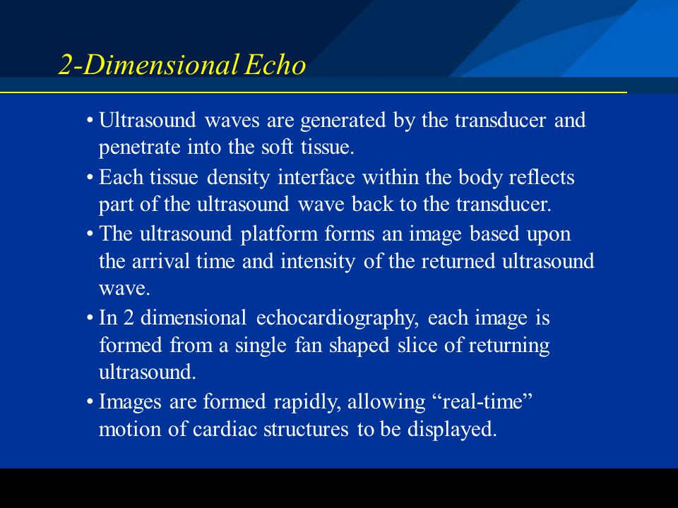 ©2004 St. Jude Medical CRMD 2-Dimensional Echo Ultrasound waves are generated by the transducer and penetrate into the soft tissue. Each tissue densit
