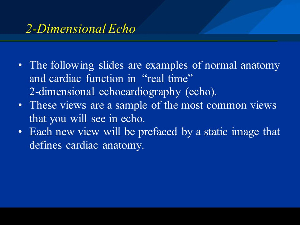 ©2004 St. Jude Medical CRMD 2-Dimensional Echo The following slides are examples of normal anatomy and cardiac function in real time 2-dimensional ech