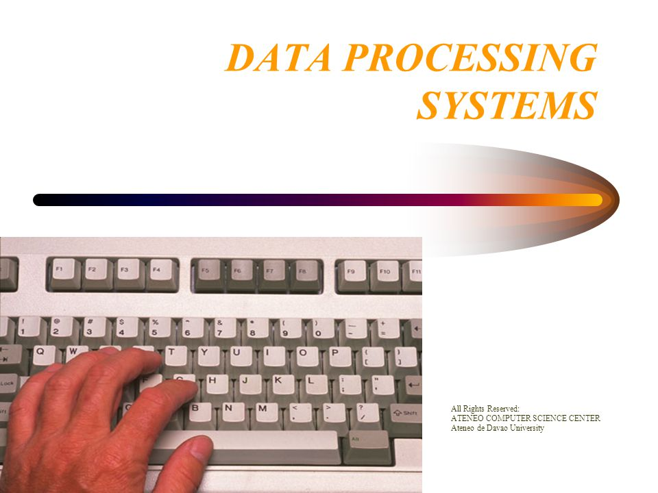 Areas of the EDP Department –Auditor Accounting and computer specialists who are responsible for assessing the effectiveness and efficiency of the computer system *Data Base Administrator Responsible for organizing a large volume of data such as the database of an organization