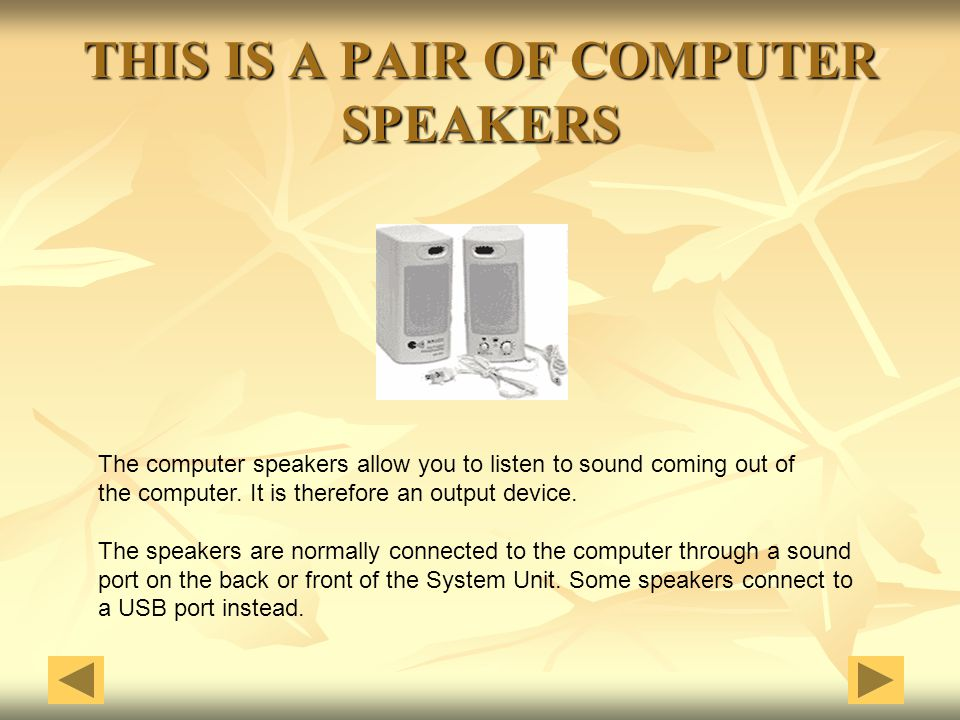 THIS IS A PAIR OF COMPUTER SPEAKERS The computer speakers allow you to listen to sound coming out of the computer. It is therefore an output device. T