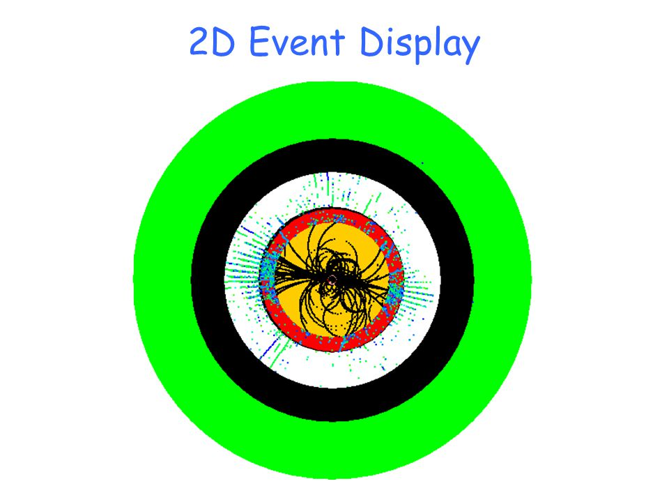 2D Event Display