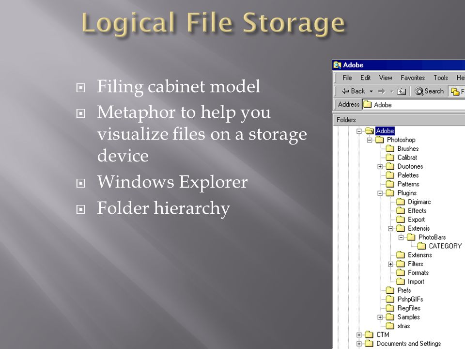 Filing cabinet model Metaphor to help you visualize files on a storage device Windows Explorer Folder hierarchy