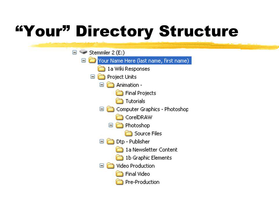 Your Directory Structure