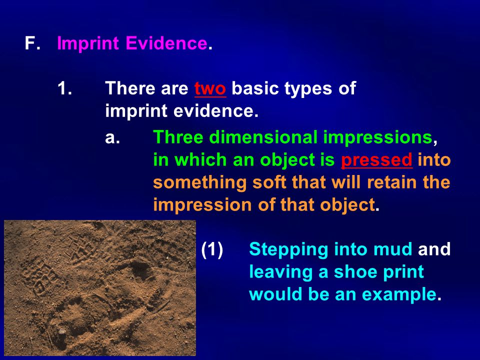 F.Imprint Evidence. 1.There are two basic types of imprint evidence. a. Three dimensional impressions, in which an object is pressed into something so