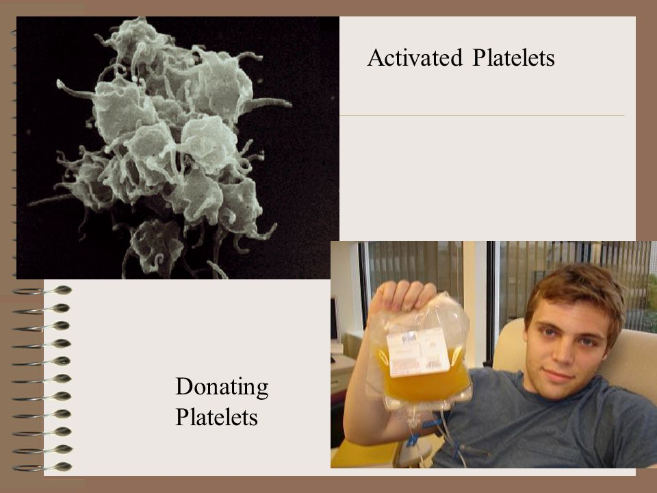 D: Thrombocytes (platelets) are non-nucleated cell fragments approximately 1/3 the size of a RBC they stick to each other and to the walls of blood vessels at the site of injury and release clotting factors that function in clotting process