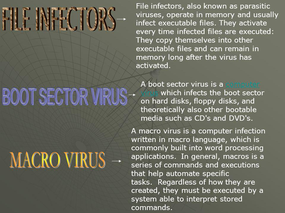 File infectors, also known as parasitic viruses, operate in memory and usually infect executable files. They activate every time infected files are ex