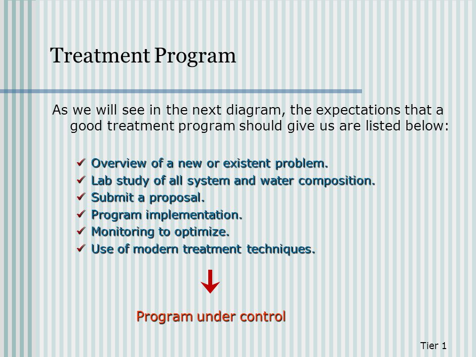 Treatment Program As we will see in the next diagram, the expectations that a good treatment program should give us are listed below: Overview of a ne