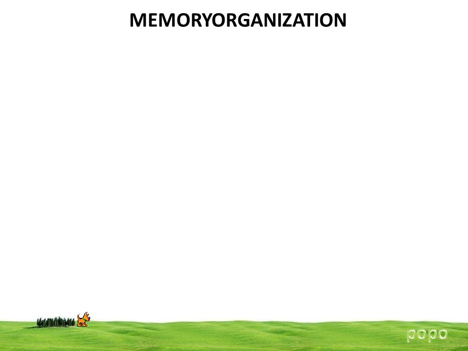 MEMORYORGANIZATION