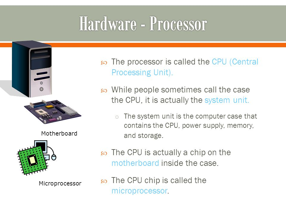 The processor is called the CPU (Central Processing Unit).