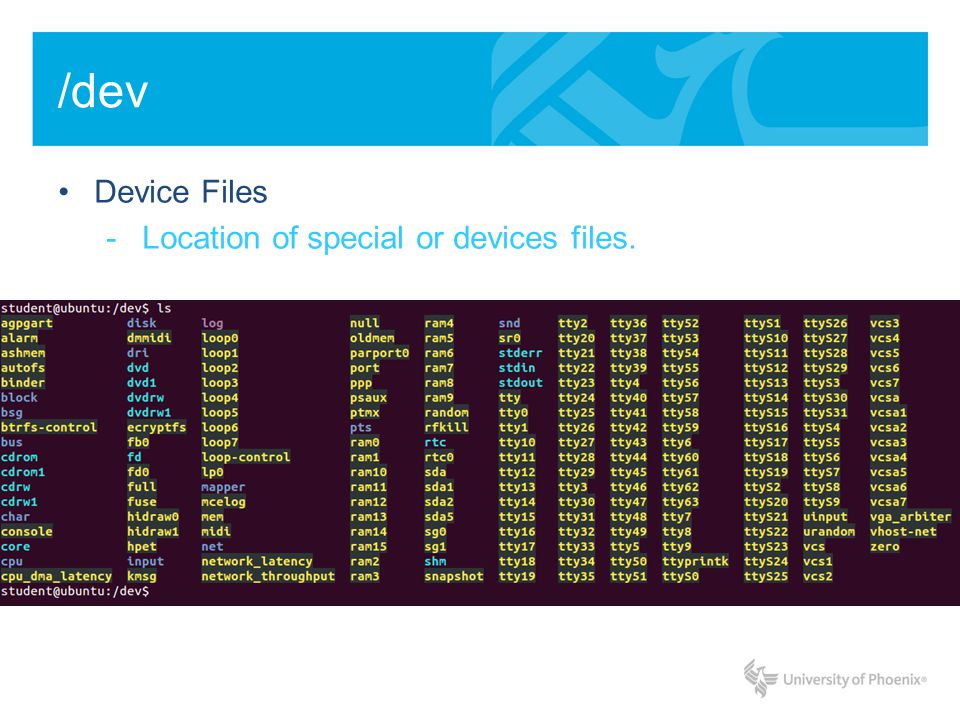 /dev Device Files -Location of special or devices files.
