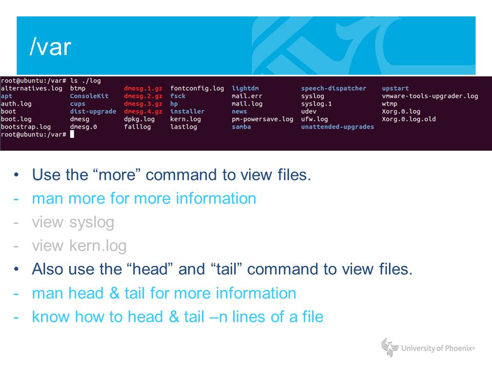 /var Use the more command to view files. -man more for more information -view syslog -view kern.log Also use the head and tail command to view files.