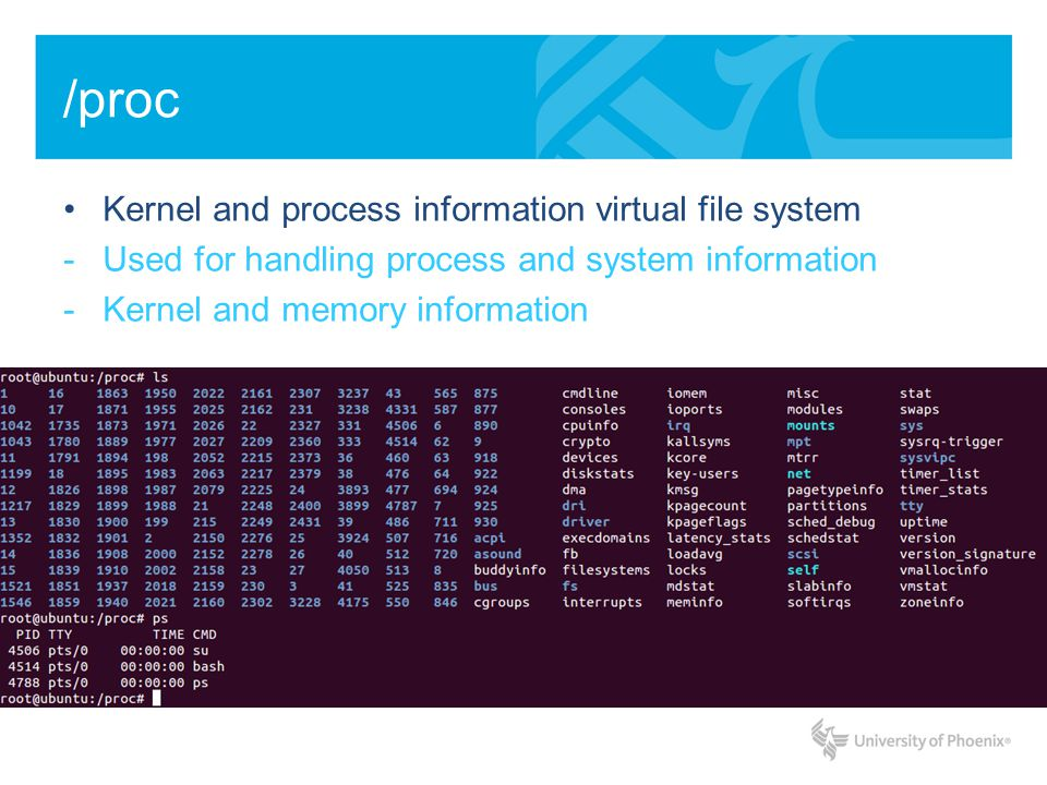 /proc Kernel and process information virtual file system -Used for handling process and system information -Kernel and memory information