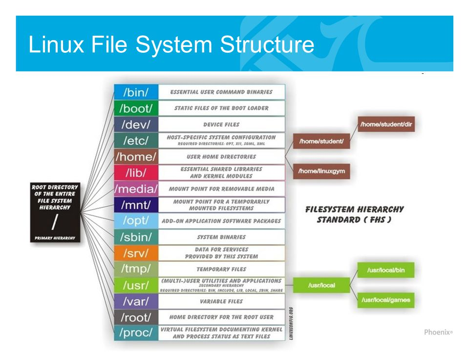 /usr User Hierarchy -Second major section of the file system.