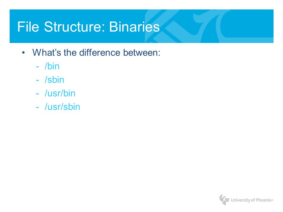 File Structure: Binaries Whats the difference between: /bin & /usr/bin When UNIX was first written, /bin and /usr/bin physically resided on two different disks: /bin being on a smaller faster (more expensive) disk, and /usr/bin on a bigger slower disk.