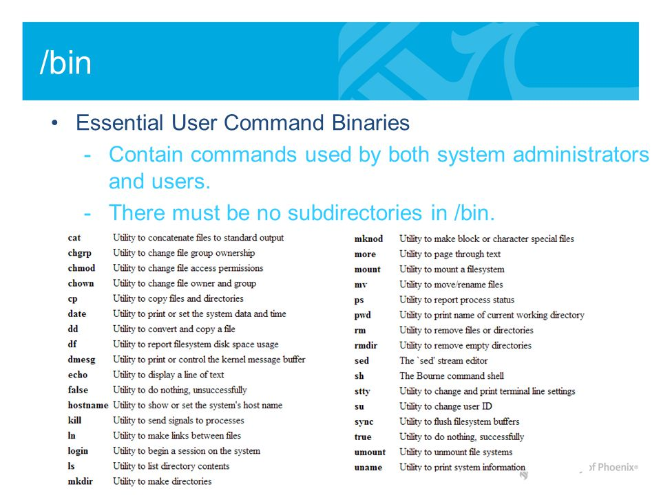 /bin Essential User Command Binaries -Contain commands used by both system administrators and users. -There must be no subdirectories in /bin.