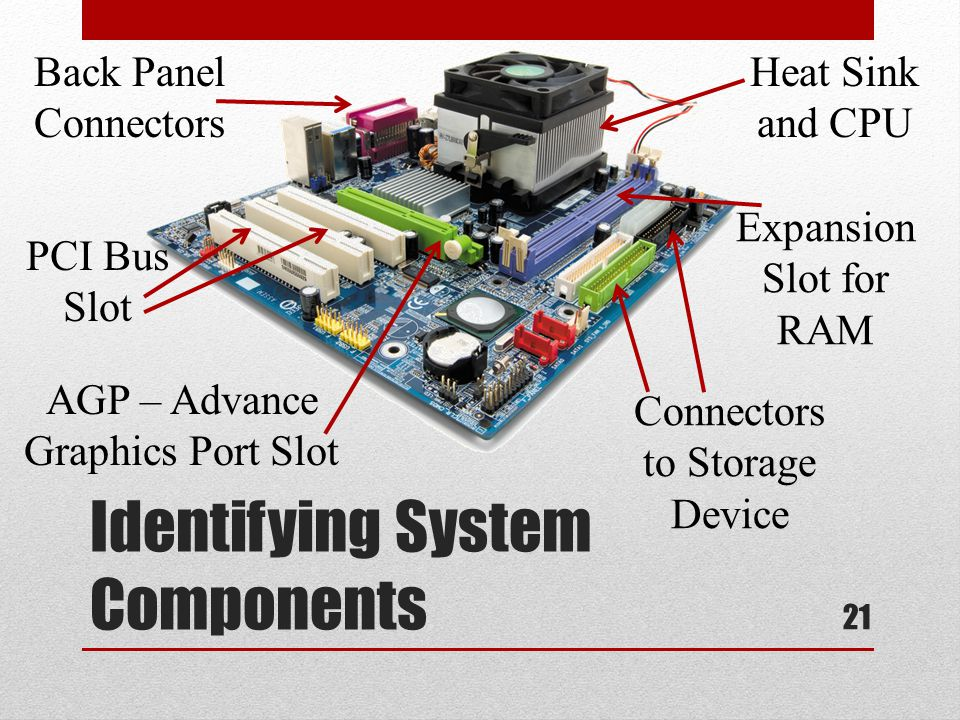 Identifying System Components Back Panel Connectors AGP – Advance Graphics Port Slot PCI Bus Slot Heat Sink and CPU Expansion Slot for RAM Connectors