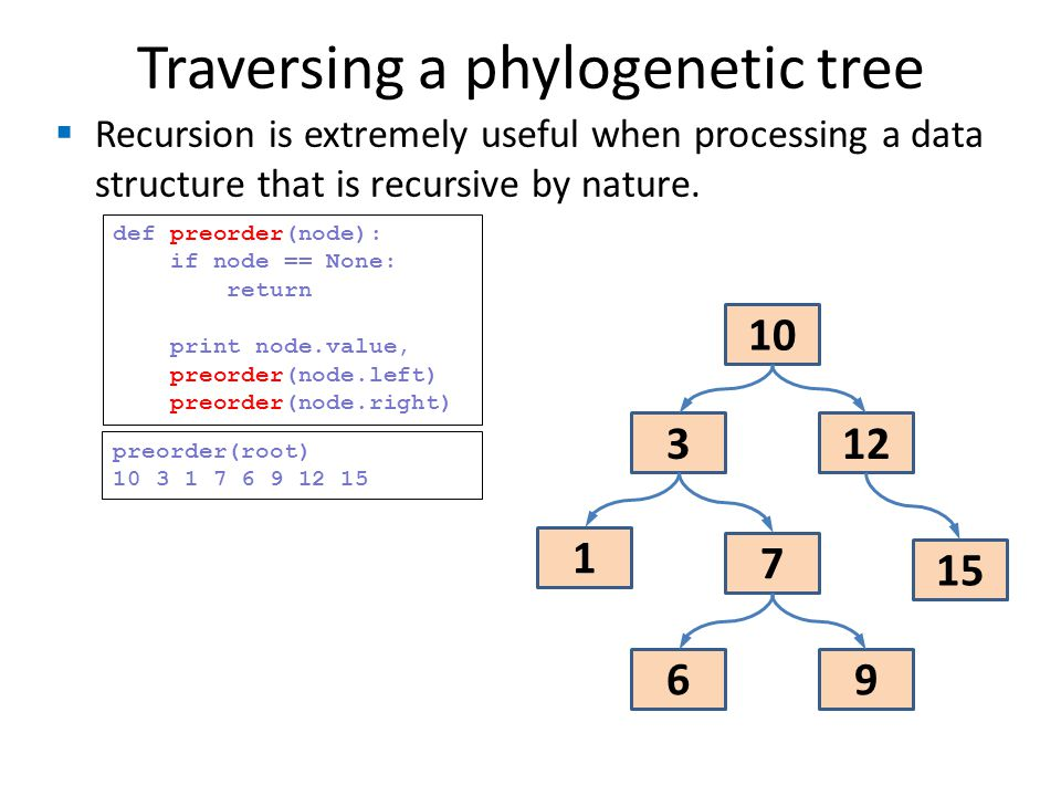Traversing a phylogenetic tree Recursion is extremely useful when processing a data structure that is recursive by nature. 10 123 1 15 7 9 6 def preor