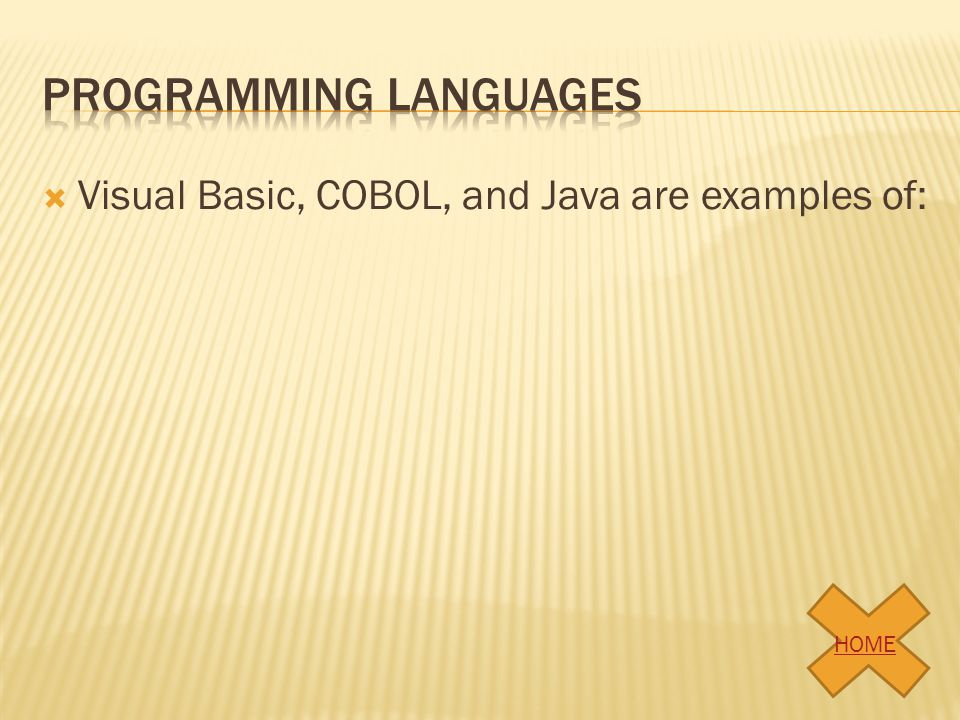 Visual Basic, COBOL, and Java are examples of: HOME